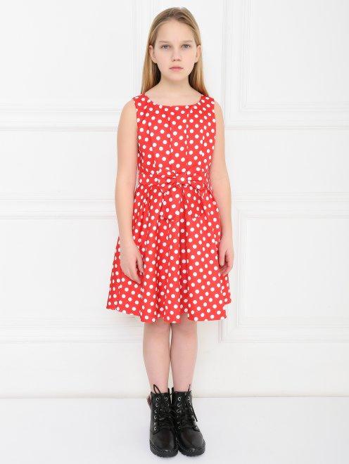 Платье приталенное в горошек - МодельВерхНиз