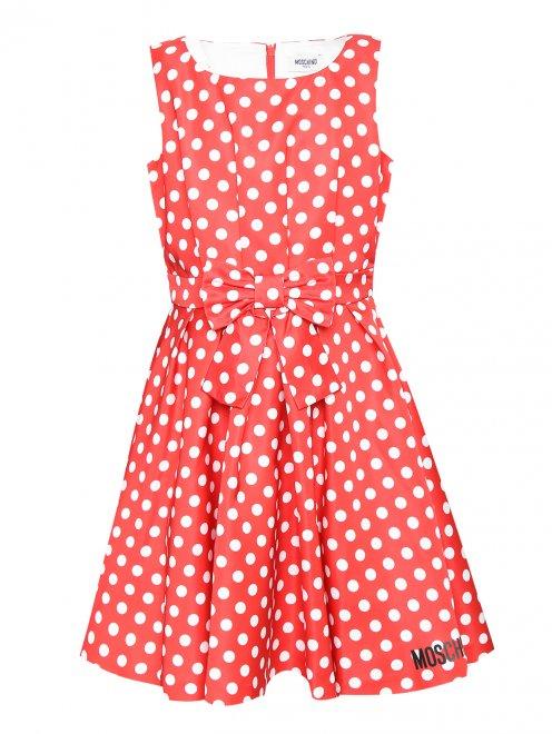 Платье приталенное в горошек - Общий вид